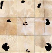 İsimsiz, 2005 Şasiye gerilmiş parşömen Poliptik Her biri 41 x 41 cm
