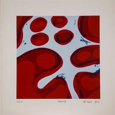 Beden V, 1992 Serigrafi 50 x 50 cm Ed. 100