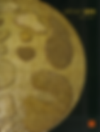Ekran Resmi 2019-01-23 22.41.53.png
