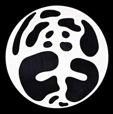 İsimsiz, 2007 Şasiye gerilmiş tuval bezi Ø 123 cm