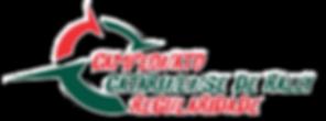 Logo CAMPEONATO CATARINENSE COLOR Contor