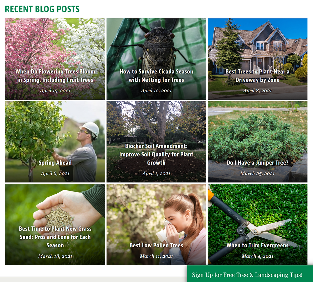 Image of the Davey Tree blog site showing a list of articles about tree care.