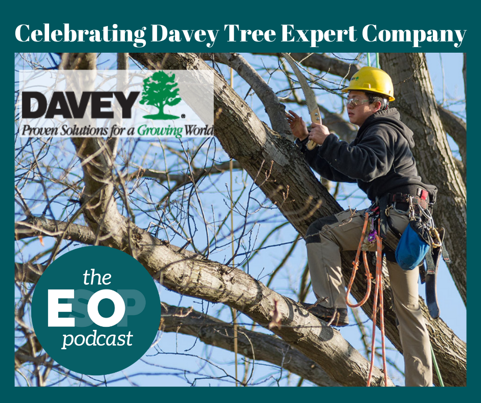 "Arborist at work in a tree with the logo ""Davey - Proven Solutions for a Growing World"""