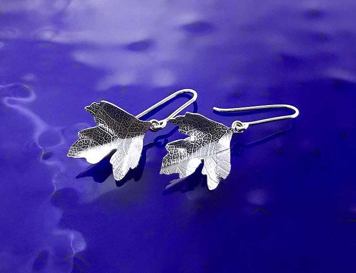 Hawthorn earrings