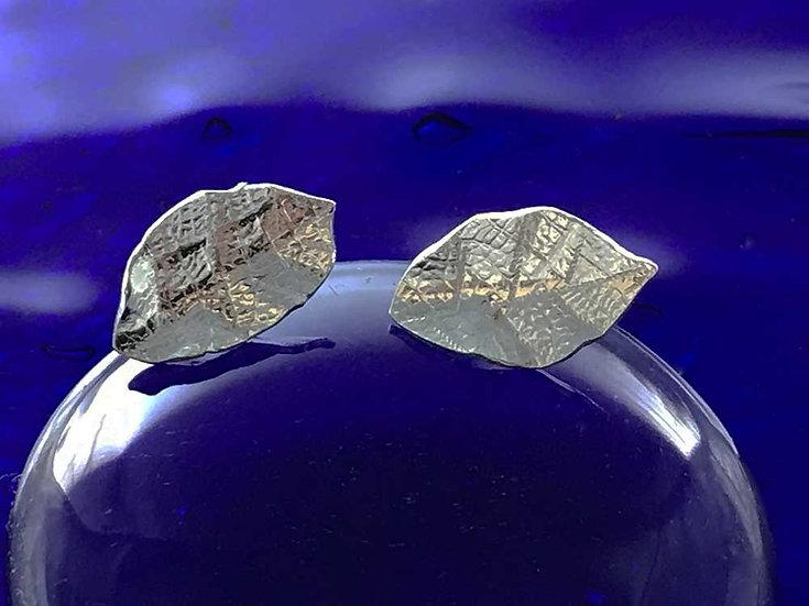Beech leaf earring Studs