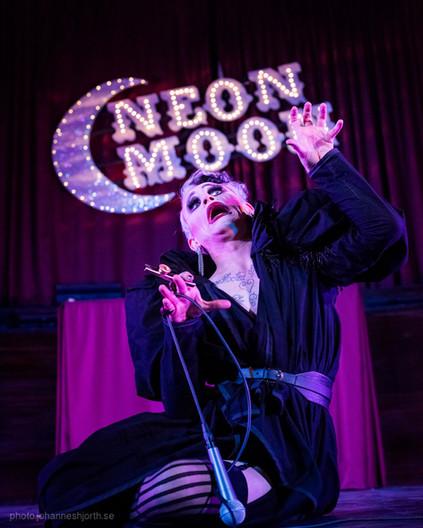 Joe Black - Neon Moon - Cambridge Guildhall
