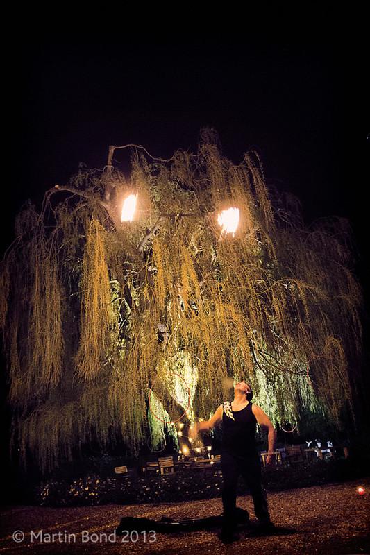 Arcturus Light - Neon Moon - Willow Tree