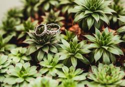 Wedding rings greenery