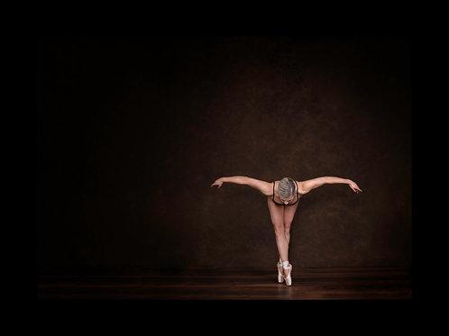 Ballet Pose #1