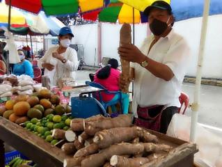 Cosecha de El Arbolito se vende en San Antonio Plaza