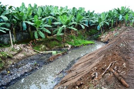 Limpieza de canal aguas servidas