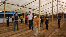 Plántulas para estudiantes de agronomía
