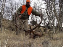 2010 Third Rifle Season on National Fore