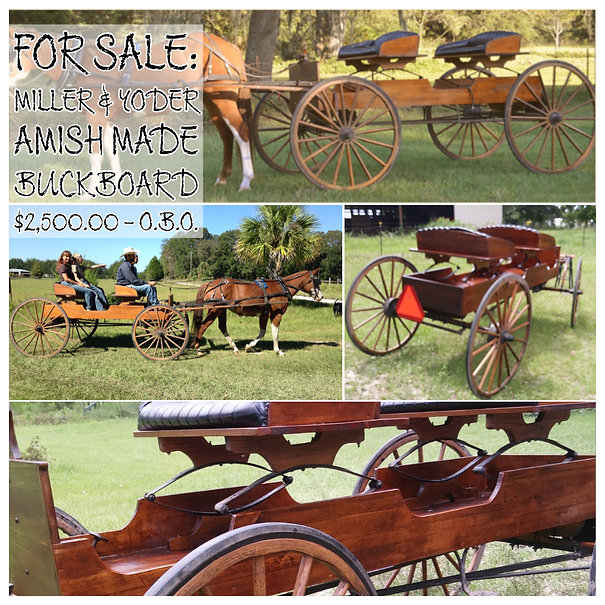 Miller and Yoder Amish made buckboard for sale in Live Oak Florida