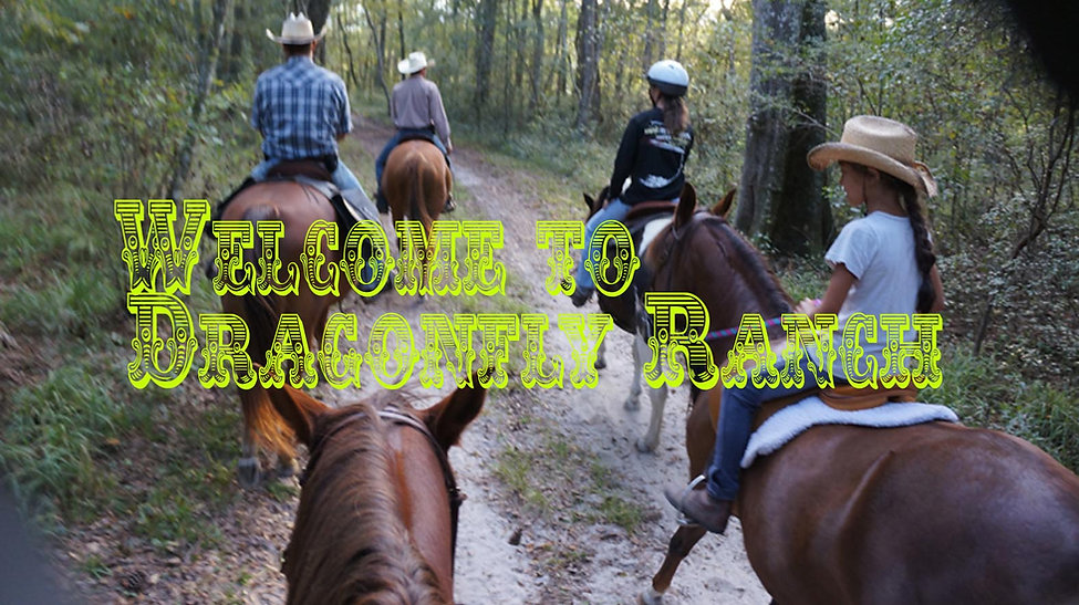 Horseback riding with Dragonfly Ranch in Live Oak Florida