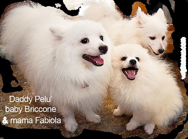 2-Briccone-Pelu-Fabiola-4-30-19.png