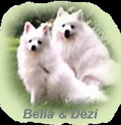 BELLA-DEZI.png