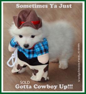 cowboy-up.jpg