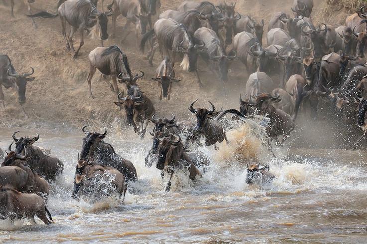 AFRICA 2015 760.jpg