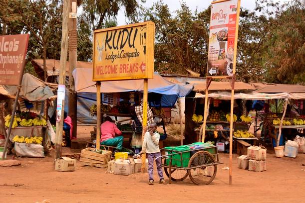 AFRICA 2015 26806.jpg