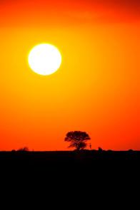 AFRICA 2015 25576.JPG