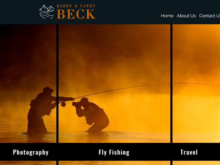 New Website, Guiding Special, & How NZ Handled Covid