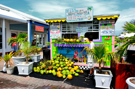 2013 bahamas0170.jpg
