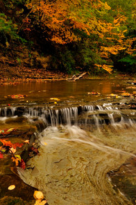 Twenty Mile Creek Pa.0079.jpg