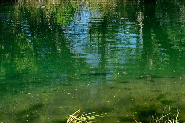 2194ARGENTINA WATERS .jpg