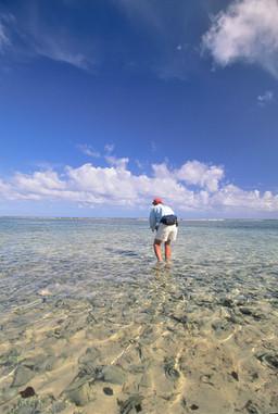 Turneffe Belize 10.JPG