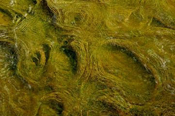 Rock pattern.0076.jpg