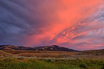 Slough Creek Yellowstone Pk. B&C BECK Image00030.jpg