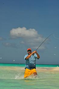 Paul Johnson chasing a bonefish LOS ROQUES0016.JPG
