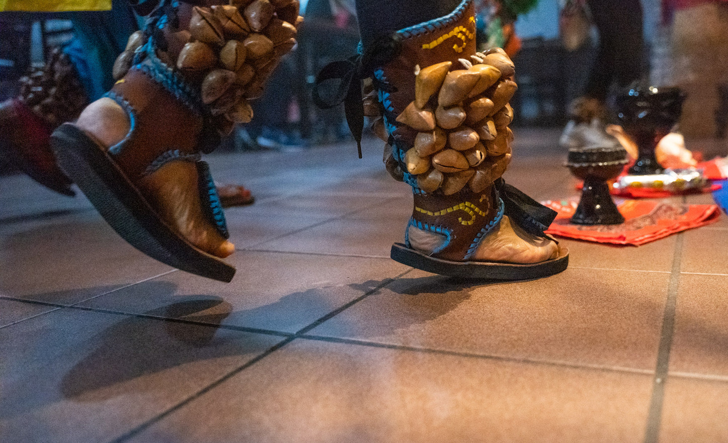 The coyoleras, shown here on a dancer's ankles, are made of ayoyotes shells from a chachayote tree which is common in Mexico.