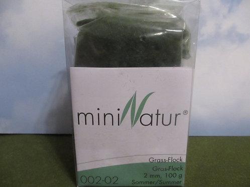 2 MM Summer  Static Grass 100 grams 002-02