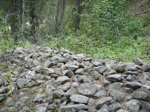 Alder Creek #2