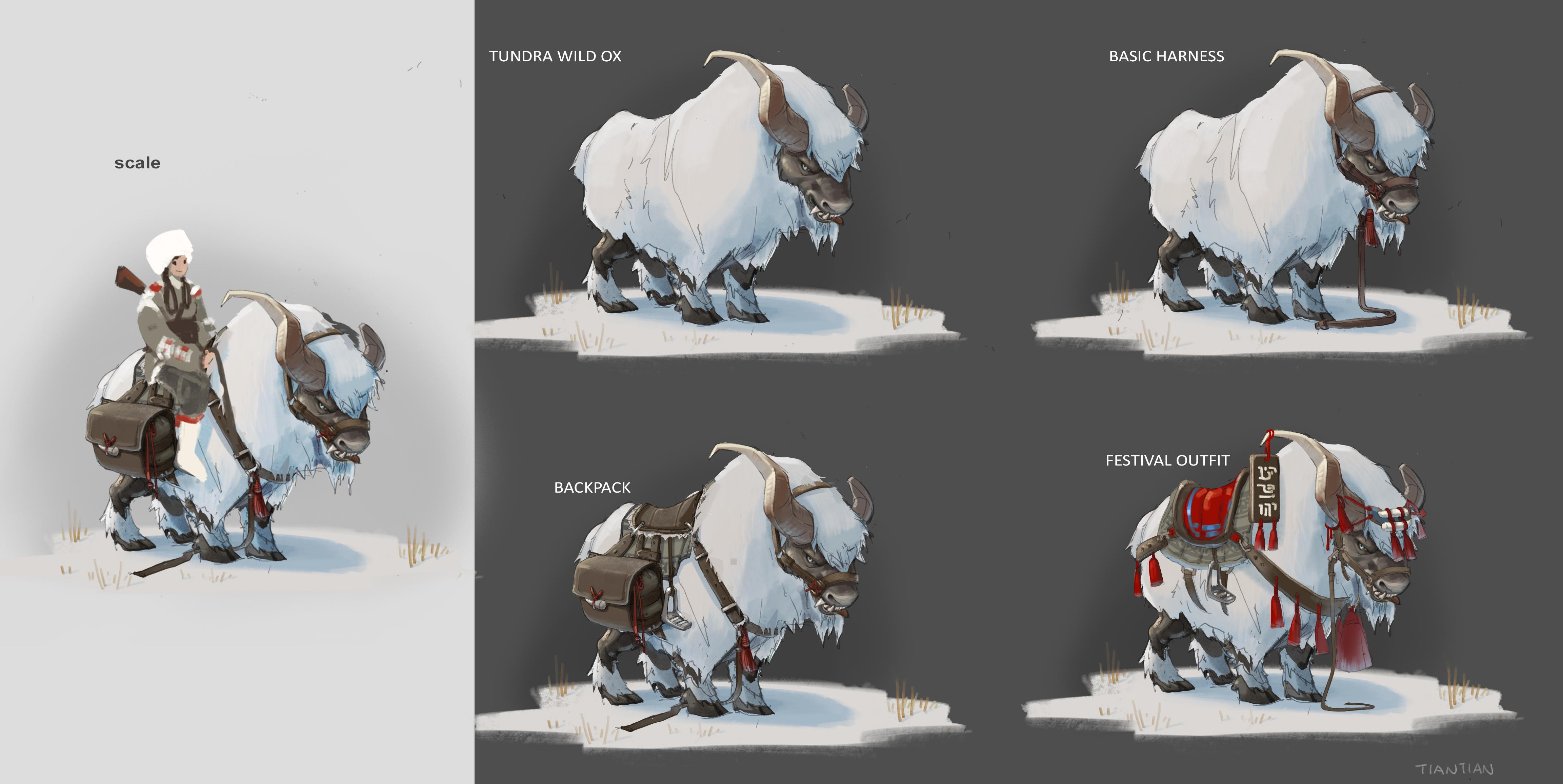 tundra wild ox