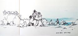 shishi beach south stacks
