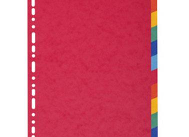 Separatore a4-maxi a 12tacche in cartoncino riciclato 220gr forever