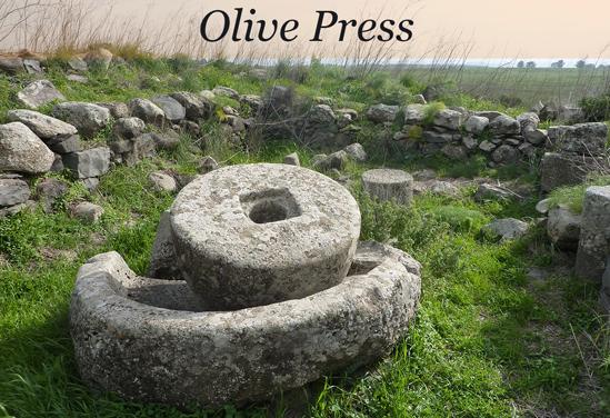 Golan Olive Press