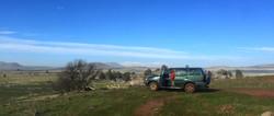 Golan ATV tours