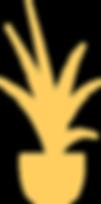 Web SERV_NOV-42.png