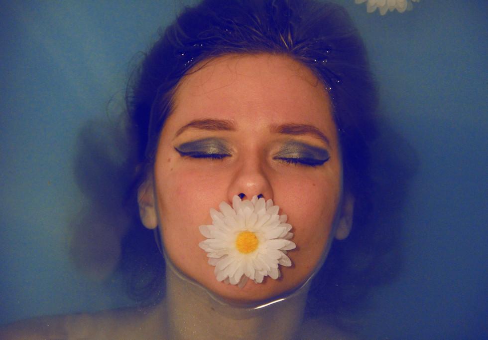 Copy of Blue Eyed Daisy-2 John Kyritsis.