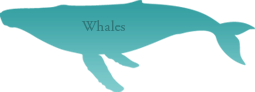 whales_rollover.png 2014-3-6-19:35:2