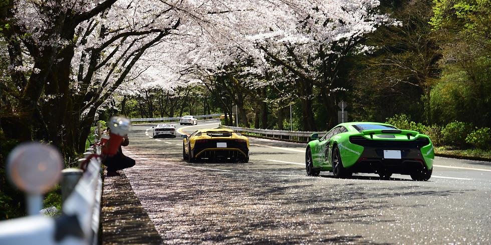 World X Series Rally Japan