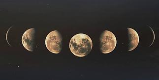 seven moon logo.webp