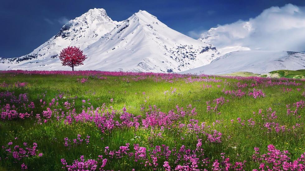mountains-736886.jpg
