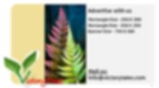 Annotation 2020-06-05 224105.jpg