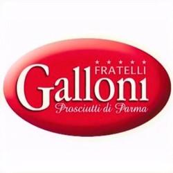 F.LLI GALLONI S.p.A