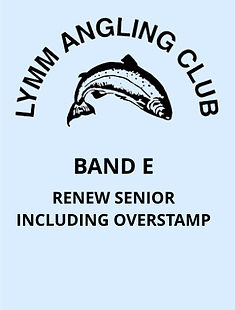 V5 Band E - Renew Senior Inc Overstamp.j